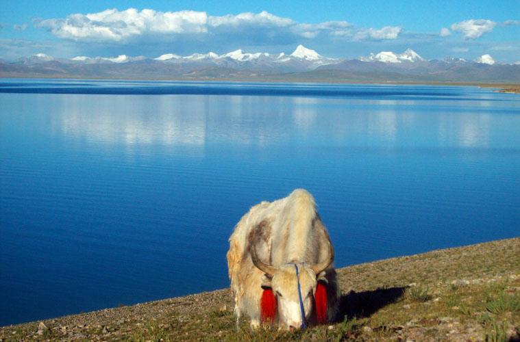 Namtso Lake in Tibet