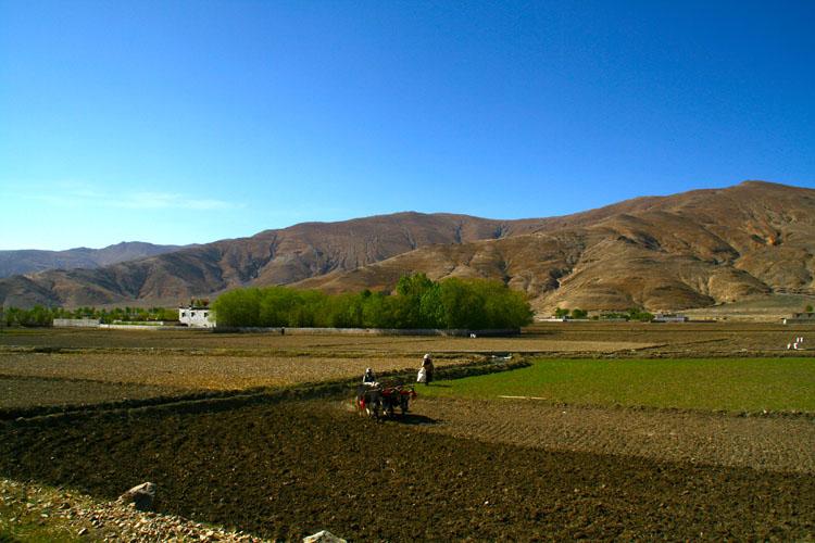 Tingri Landscape