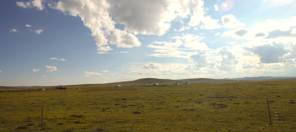 grassland in amdo